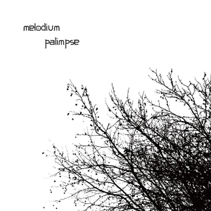 http://melodiumbox.free.fr/pictures/disco/palimpsee.jpg